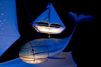sur le dos de la baleine